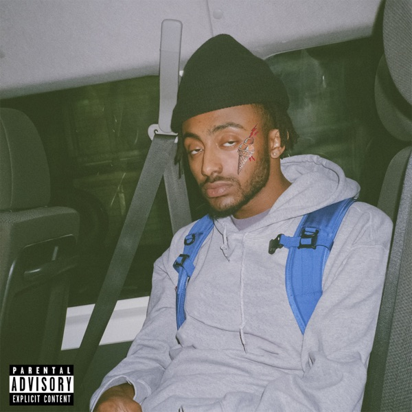 REEL IT IN (Remix) - Aminé song image