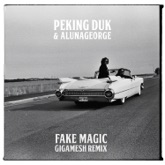 Fake Magic (Gigamesh Remix) - Single