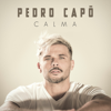 Pedro Capó - Calma ilustración
