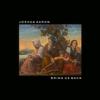 Bring Us Back - Joshua Aaron