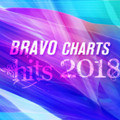 Bravo Charts Hits 2018