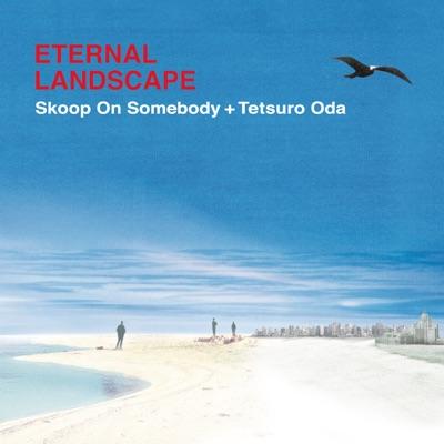 Eternal Landscape - Single - Skoop on Somebody