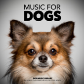 Music for Dogs: Relax and Chill Piano Music for Dogs & Pets