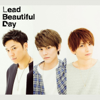 Beautiful Day - Lead