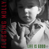 Flogging Molly - Life Is Good artwork