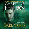 Christine Feehan - Dark Nights  artwork