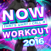 Now That's What I Call a Workout 2016 - Various Artists - Various Artists