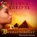 Hanns Kneifel - Der Bronzehändler - Historischer Roman (Ungekürzt)