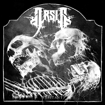 Arsis Visitant music review