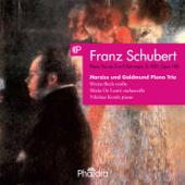 Piano Trio In E Flat Major, Op. 100, D. 929: II. Andante Con Moto  Narziss Und Goldmund Piano Trio - Narziss Und Goldmund Piano Trio