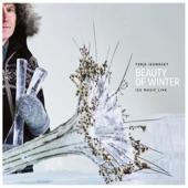 Terje Isungset - Arctic Icemusic (feat. Maria Skranes, Radik Tyulyush, Evie Mark & Beatrice Deer)