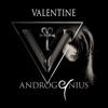 Androgenius - Past