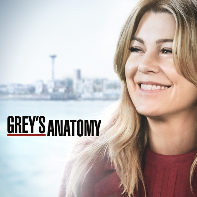 GreyS Anatomy Burning Series Staffel 6