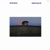 Pat Metheny - Bright Size Life  artwork