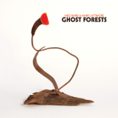 Ghost Forests-Meg Baird & Mary Lattimore