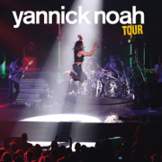 Frontières (Live au Forest National mai 2011) - Yannick Noah