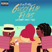 Gucci Flip Flops (feat. Snoop Dogg & Plies) [Remix] - Single Mp3 Download