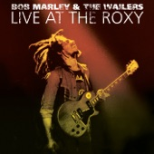 Bob Marley & The Wailers - Trenchtown Rock