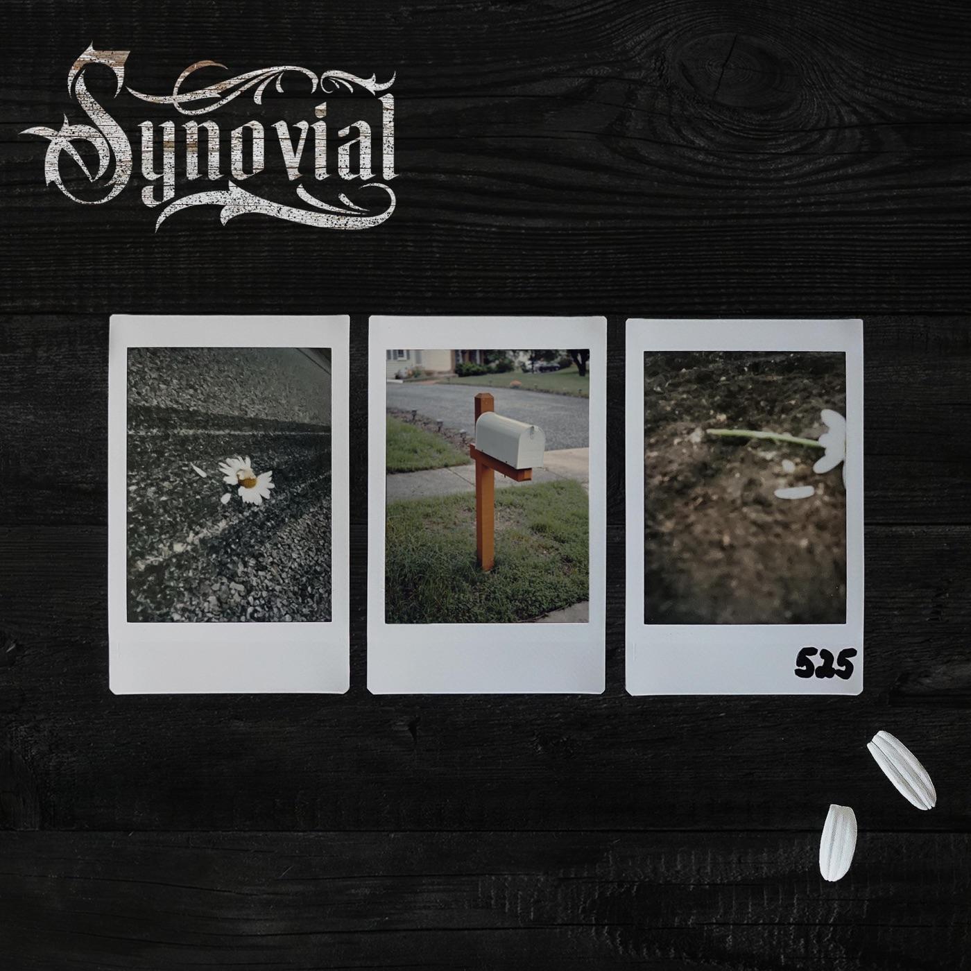 Synovial - 525 [single] (2018)