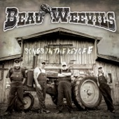 Beau Weevils - Mexico Again