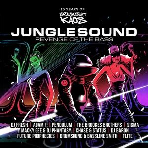 Junglesound: Revenge of the Bass (15 Years of Breakbeat Kaos)