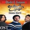 Dasht E Junoon Sad Version From Dasht E Junoon Single