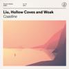 Liu & WOAK - Coastline (feat. Hollow Coves)  arte