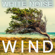 White Noise Wind - Pink Noise White Noise