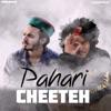 Pahari Cheeteh