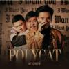 Polycat - อาวรณ์ artwork