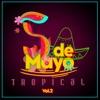 Cinco De Mayo Tropical, Vol. 2