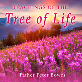 Teachings of the Tree of Life (Unabridged) audiobook