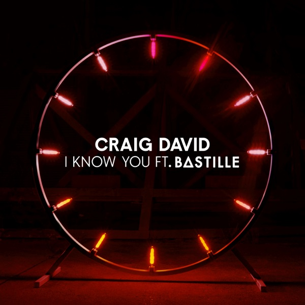 Craig David / Bastille - I Know You