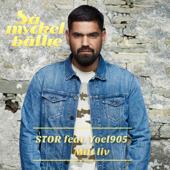 Mitt liv (feat. Yoel905) - Stor