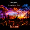 Ignite - Single, Tiki Taane & Salmonella Dub