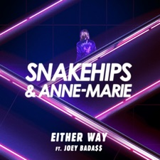 Either Way by Snakehips & Anne-Marie feat. Joey Bada$$