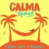4. Calma (Remix) - Pedro Capó & Farruko