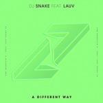 DJ Snake / Lauv