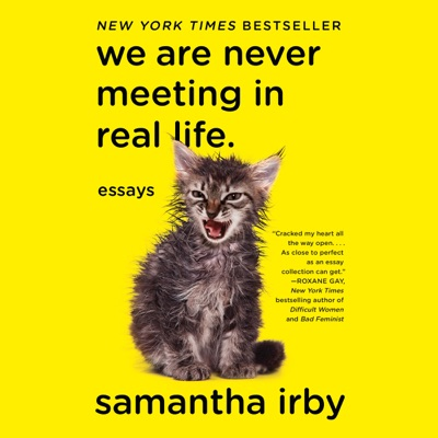 We Are Never Meeting in Real Life: Essays (Unabridged)