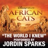The World I Knew From Disneynature African Cats Single