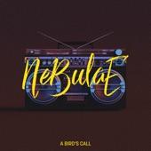 Nebulae - A Bird's Call