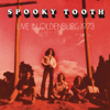Live In Oldenburg 1973 - Spooky Tooth