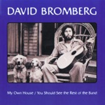David Bromberg - Lower Left Hand Corner of the Night