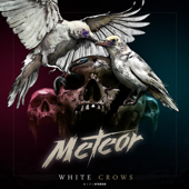 White Crows