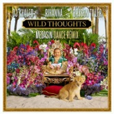 Wild Thoughts (feat. Rihanna & Bryson Tiller) [Medasin Dance Remix] - Single