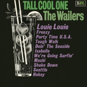 The Wailers - We're Going Surfin'