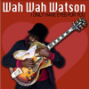 Wah Wah Watson - I Only Have Eyes For You (Radio Version) artwork