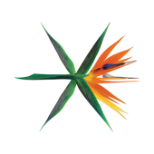THE WAR  The 4th Album-EXO