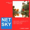 Netsky - Anything 4 U (feat. 1991) artwork