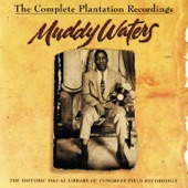 Muddy Waters - Interview #2